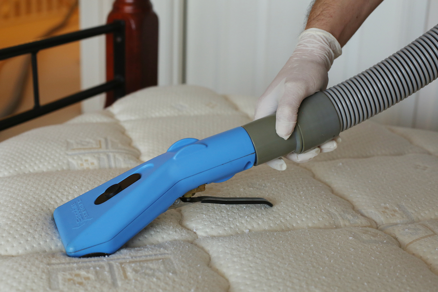 Dust Mite Cleaning Services