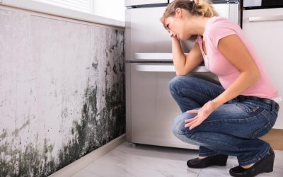 How to permanently banish mould from walls