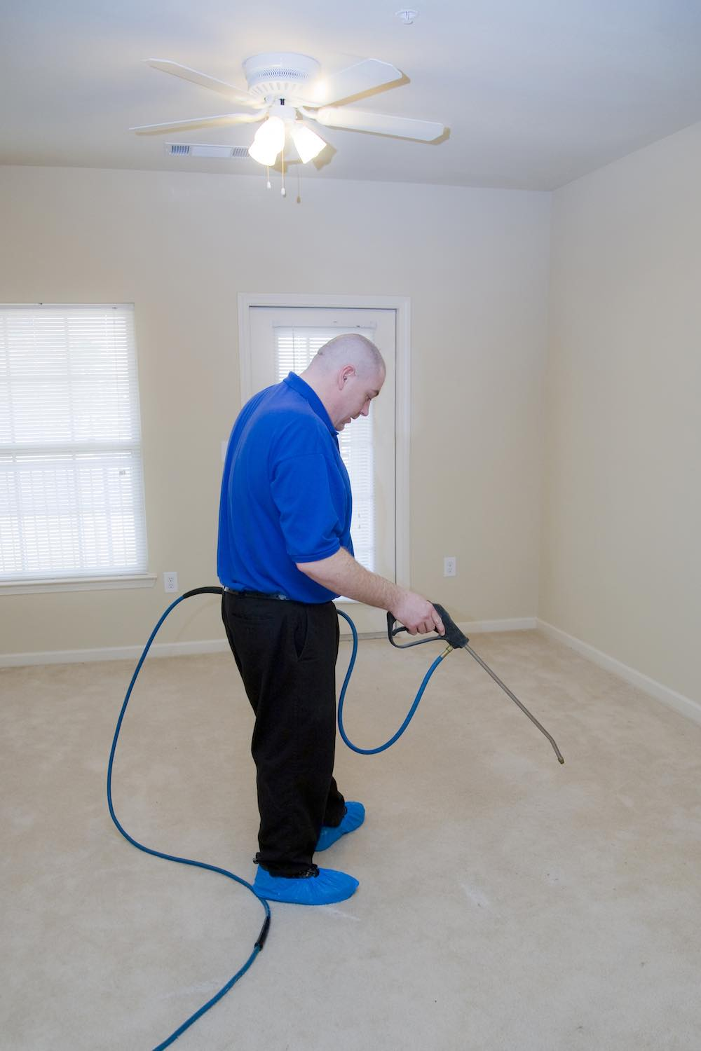 Carpet Cleaning Professional Vs Doing Yourself Metro