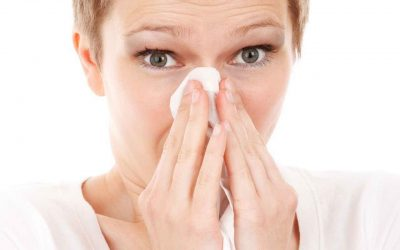 Tips on living in an allergy free home